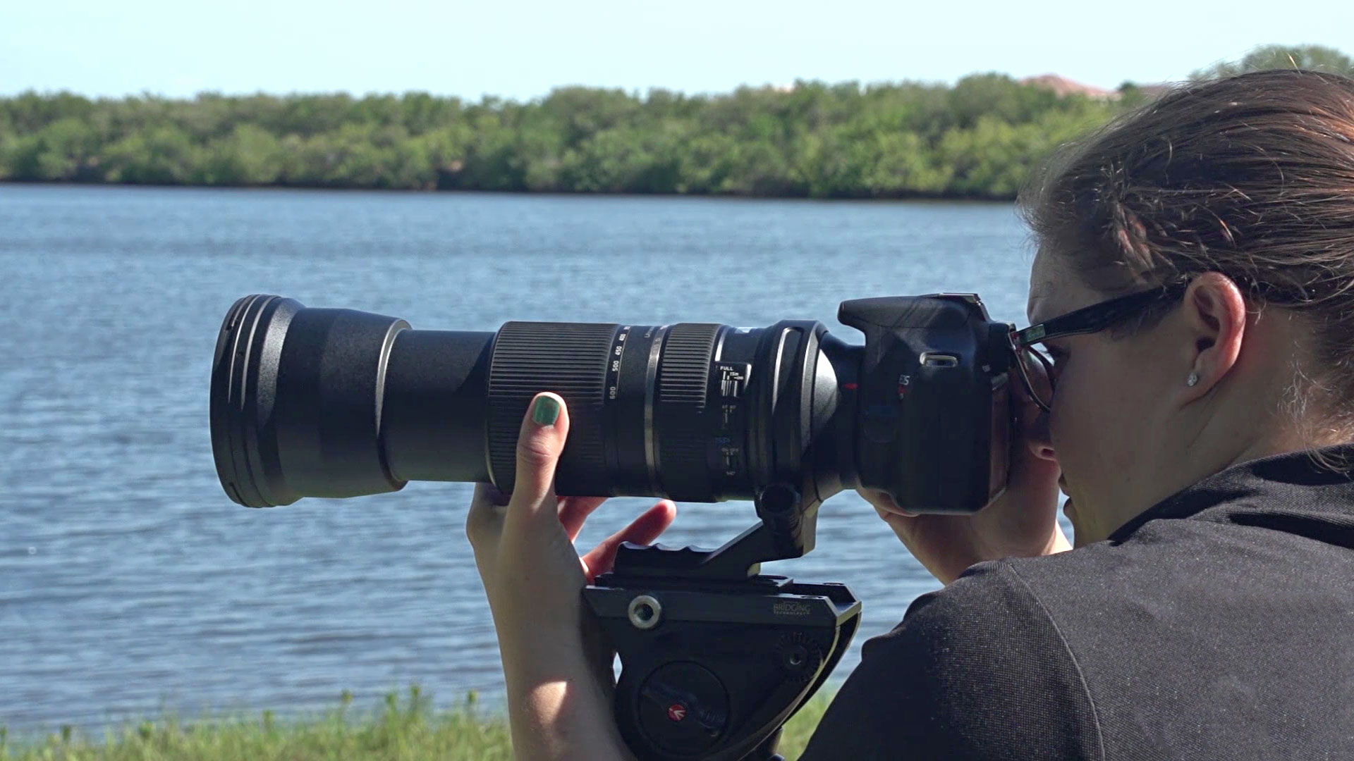 Hands-On Review: Tamron 150-600mm f/5-6 3 SP Di VC USD for
