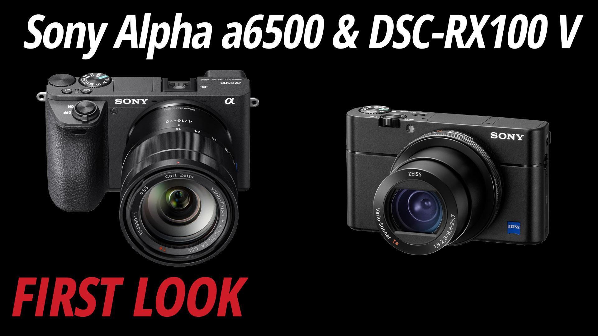 Sony A6500 Alpha Mirrorless Digital Camera Body Ilce 6500 Download Image Diagram Of Tamron Lens Pc Android Iphone And Ipad Customer Photos