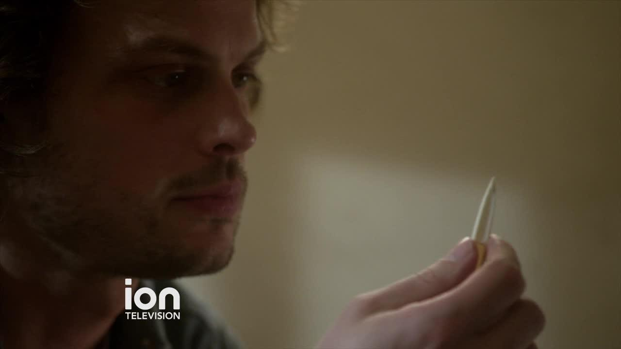 Criminal Minds Episode 1205: The Anti-terrorism SquadION