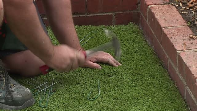 How To Lay Synthetic Turf | Bunnings Warehouse