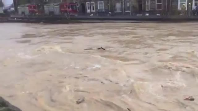 Video: Weather - River Teviot in Hawick bursting its banks