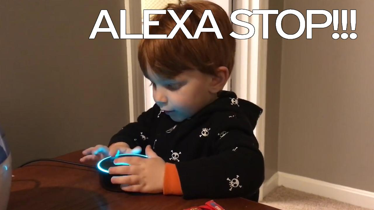 Lets You Freak Out - Parents freak out when Amazon's Alexa misunderstands young son's song  request and starts playing PORN