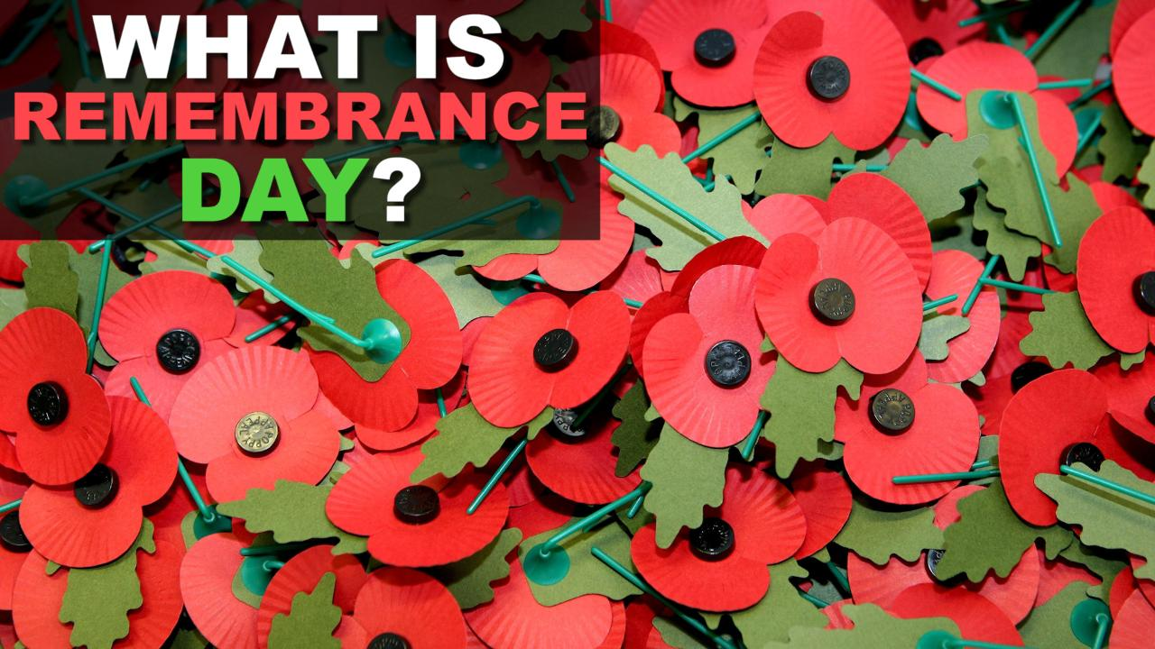 Remembrance Day 2018 How To Wear Your Poppy And What It Means