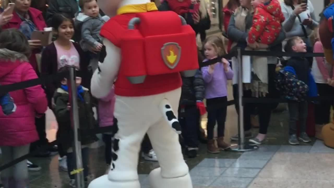 Adorable Reactions As Paw Patrol Takes Over Drake Circus