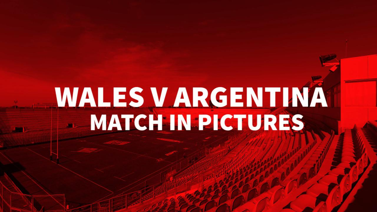 Wales v Argentina Match in Pictures