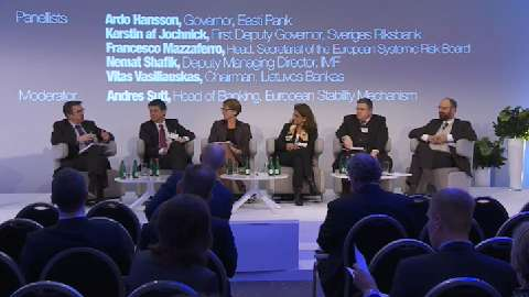 Conference on Nordic-Baltic Financial Linkages and Challenges: Panel discussion