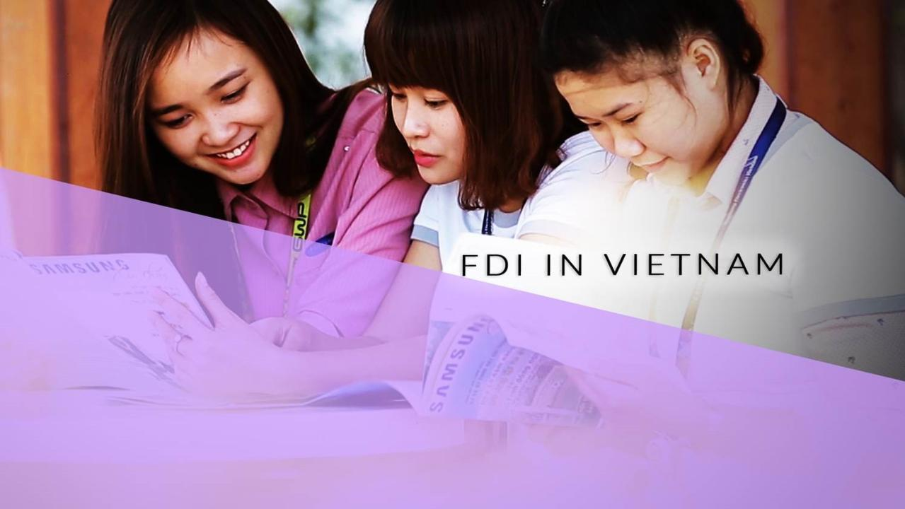 FDI in Vietnam