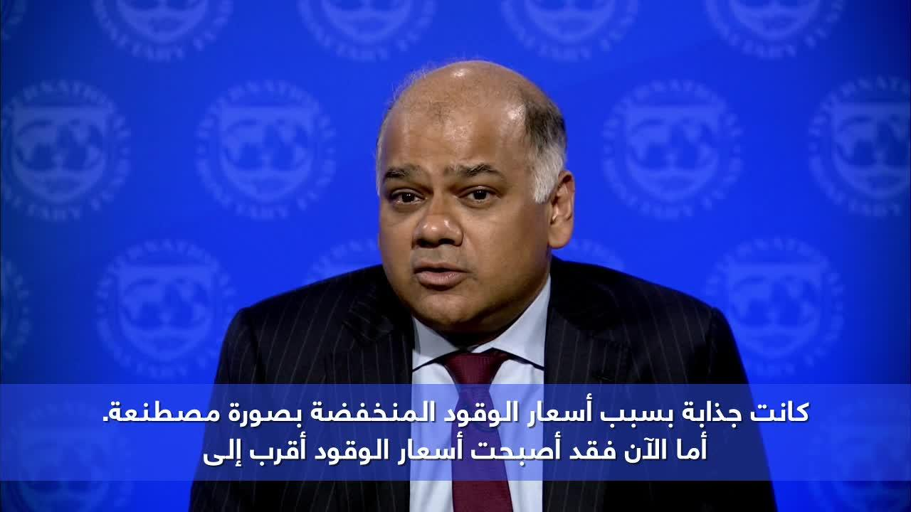 Egypt: Investment to create more jobs