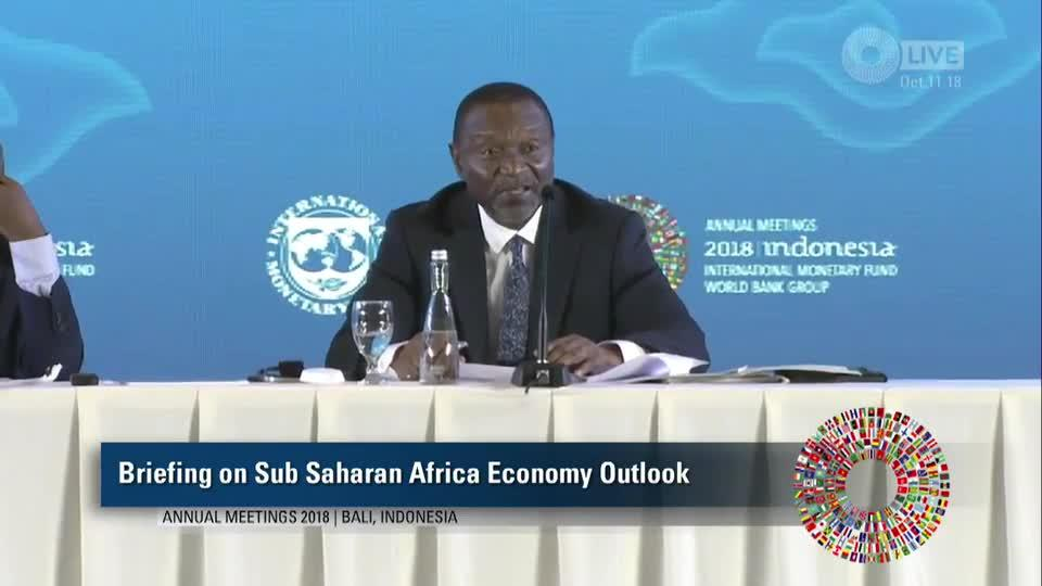 Press Briefing: Economic Outlook for Sub-Saharan Africa
