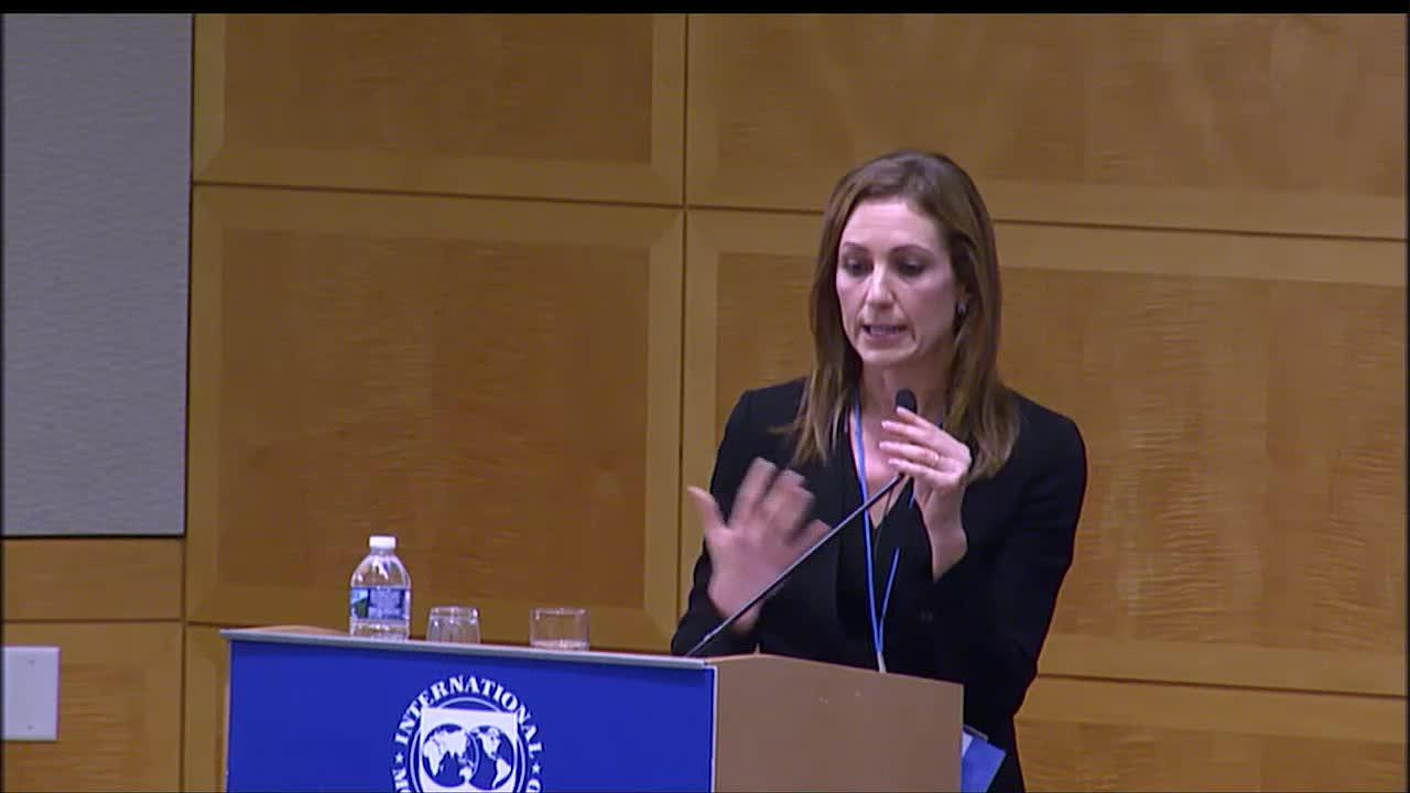 2018 IMF Annual Research Conference, Economic Forum: Navigating Rough Waters: Challenges to Policyma