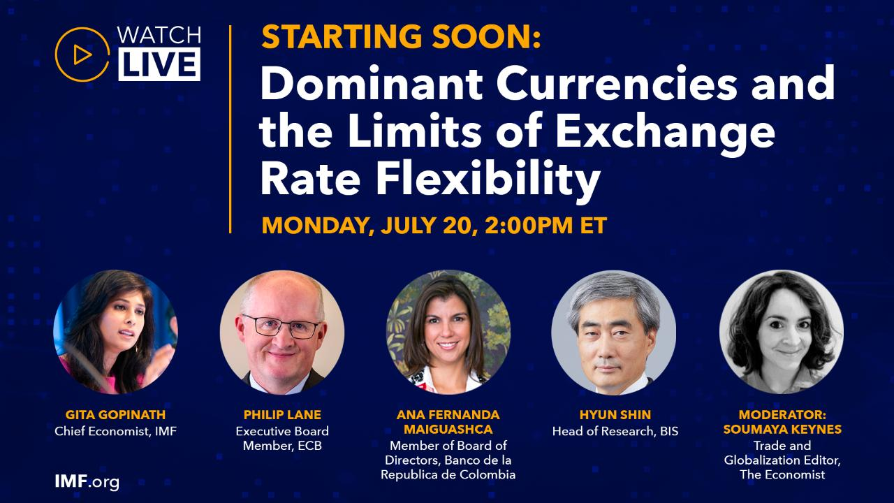 Dominant Currencies and the Limit of Exchange Rate Flexibility