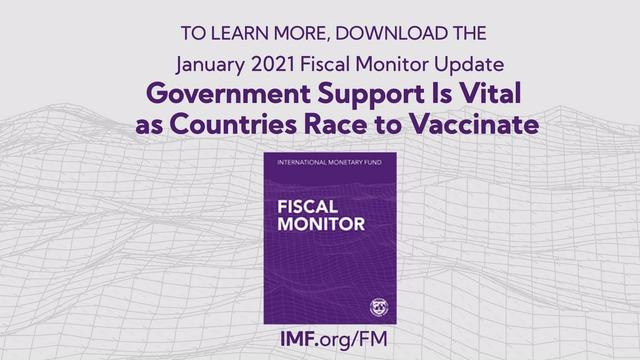 The January 2021 Fiscal Monitor Update