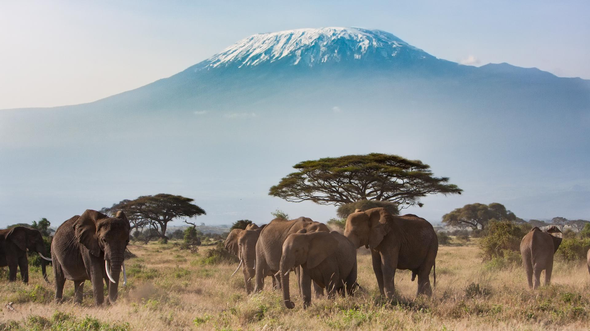 East Africa Travel Africa Lonely Planet