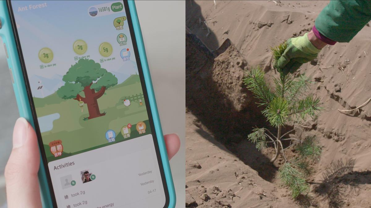 Alipay's 'Ant Forest' Makes Going Green Fun | Alizila com