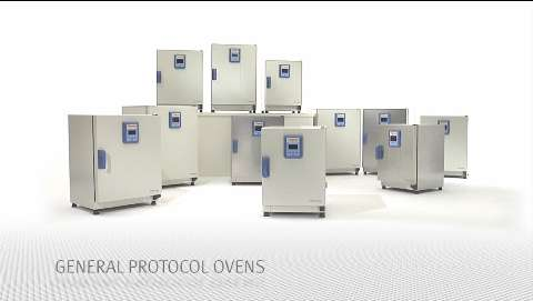 Lab Ovens & Furnaces | Thermo Fisher Scientific - US